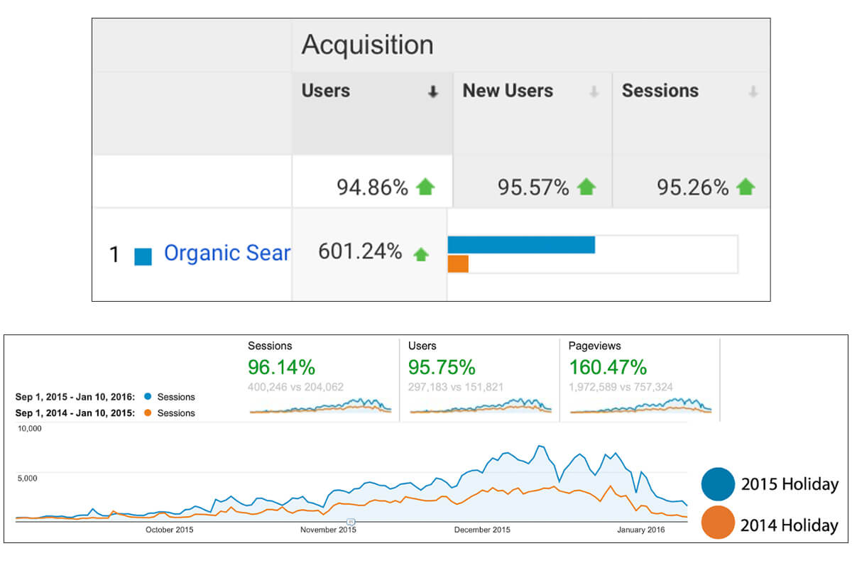 Positive Results for The Rink's Customer Acquisition and Website Analytics
